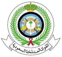 Saudi armed forces